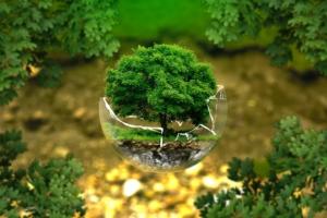 Environmental protection - UmweltschutzImage